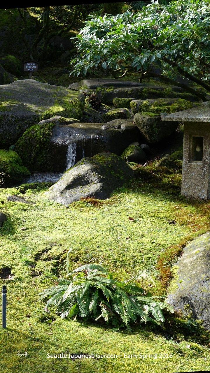 1764 Best Japanese Gardens, Architecture, Aesthetic, Etc