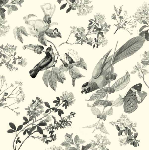 vintage bird wallpaper interior ideas pinterest