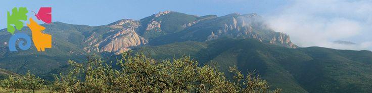 Santa Monica Mountains | National Recreation Area, California