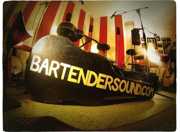 Bartender guitar case