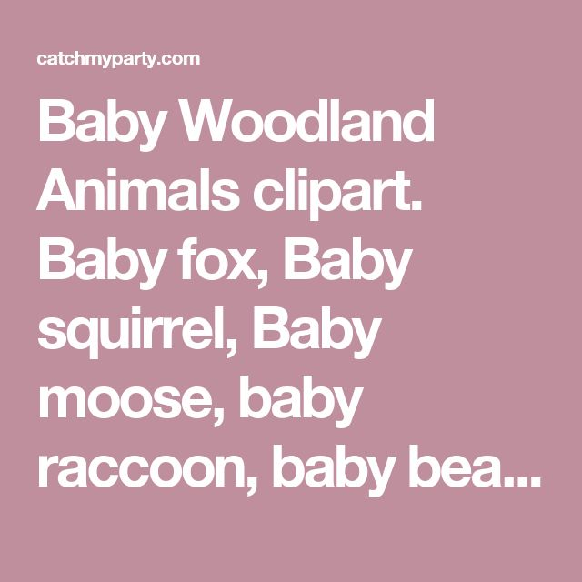 Baby Woodland Animals clipart. Baby fox, Baby squirrel, Baby moose, baby raccoon, baby bear graphics with fall laves and acorn. by Mujka Design Inc. | Catch My Party