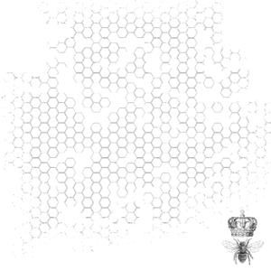 Kaisercraft - BEE HIVE - průhledná potištěná fólie - 12 - Velikost archu je 30,5 x 30,5 cm. Fólie je průhledná, černě potištěná. Je vhodná na dozdobení deníků, scrapbookových stránek apod. Motivy může