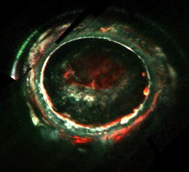 What's Powering Auroras on Jupiter? NASA's Juno Probe Finds Puzzling Clues | Space.com
