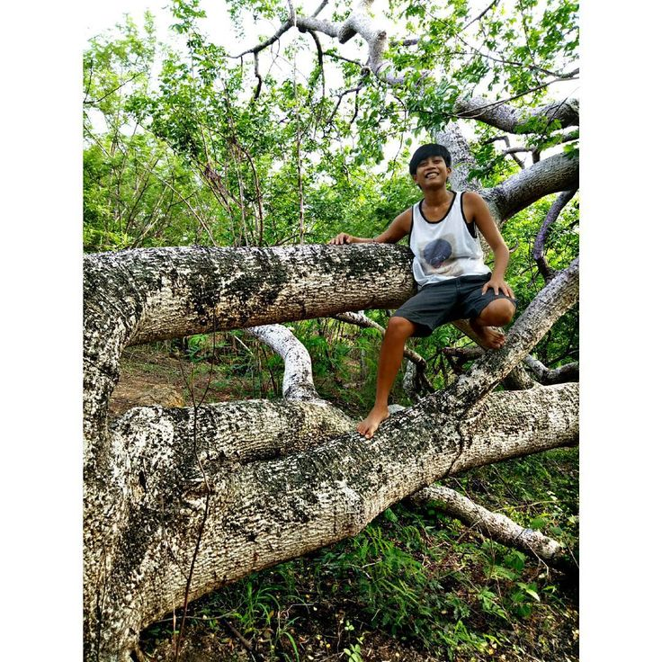 """nabali ang sanga, kapus kapalaran, humanap ng iba."" . #green #forest #hike #trees #mountain #nature #earth #love #happiness #hdr #hdrphotography #selfie #me #pose #leaves #walks #hunt #middleofnowhere #photography http://misstagram.com/ipost/1535281862459901702/?code=BVOarg6BccG"