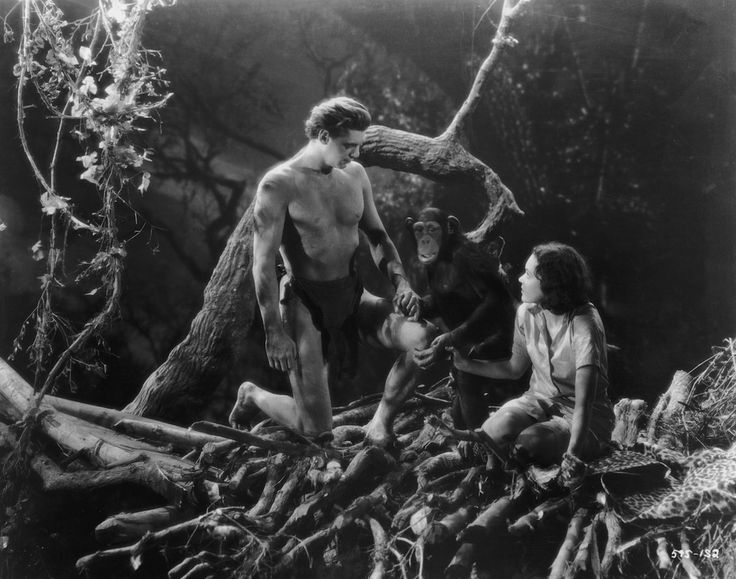 """IlPost - Johnny Weissmuller - Johnny Weissmuller e Maureen O'Sullivan nei panni di Tarzan e Jane e lo scimpanzè Cheeta in una scena del film del 1934 """"Tarzan e la compagna"""". Johnny Weissmuller fu uno dei migliori nuotatori al mondo degli anni Venti, (vincitore di 5 ori olimpici e con 67 record mondiali stabiliti in carriera) e dopo la carriera agonistica passò al cinema, diventando famoso nel ruolo di Tarzan. Morì ad Acapulco il 20 gennaio 1984. (Hulton Archive/Getty Images)"""