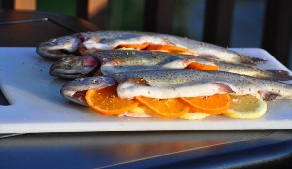 Рыба и апельсины – вкусные и полезные рецепты кухни фьюжн, рецепты с рыбой, рецепты с апельсинами, вкусные и полезные блюда, паста с окунем ...