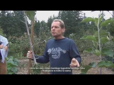 Nauka metody Back To Eden część 2 PL Mało pracy - duże uprawy, bez oprys...