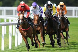 Once you know your stuff, you'll be able to plan ahead and bet on the outcomes of #horse_racing_tomorrow, whether that's 'tomorrow tomorrow' or tomorrow in several months time. His type of #betting_strategy is known in the industry as an ante-post wager.
