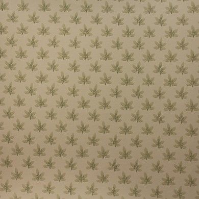 Colefax and Fowler Wallpaper Ashbury Collection - Maple Sage 07984/06
