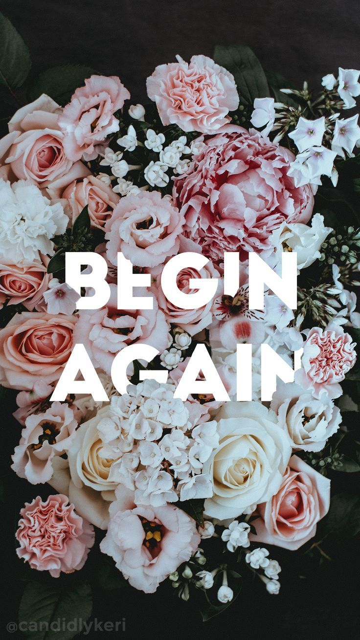 Being Again Flower Quote Pink And White Typography Background