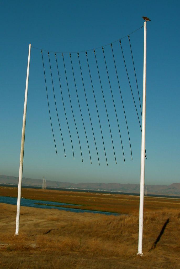 Decorative wind curtain at the Palo Alto