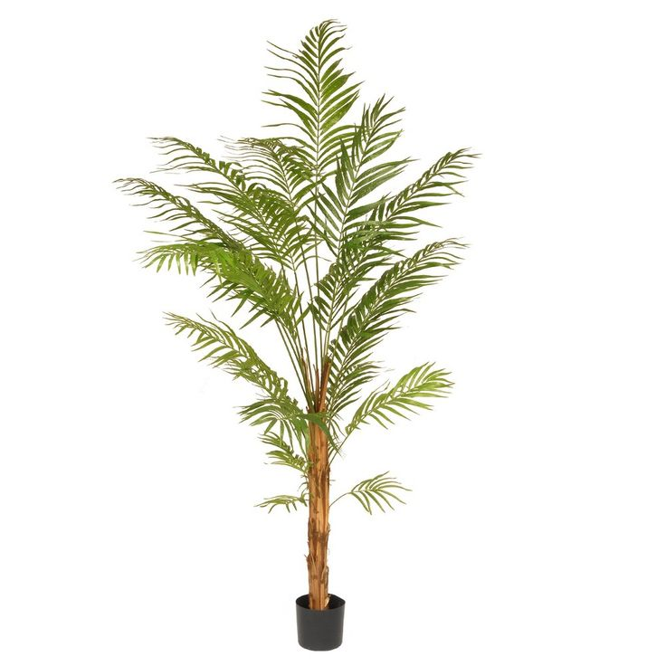 Artificial Potted Palm Tree Green 7 Ft. - National Tree Company