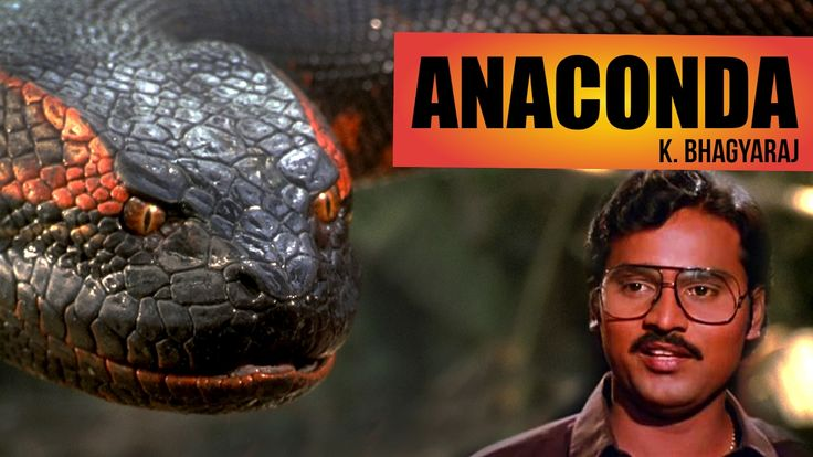 Anaconda by K. Bhagyaraj - South Indianised Trailer   Put ChutneyWhat if Anaconda is narrated by K. Bhagyaraj. No double meaning but only Triple Meaning jokes. Don't forget to Comment, Like and Share!! Subscribe to ... Check more at http://tamil.swengen.com/anaconda-by-k-bhagyaraj-south-indianised-trailer-put-chutney/