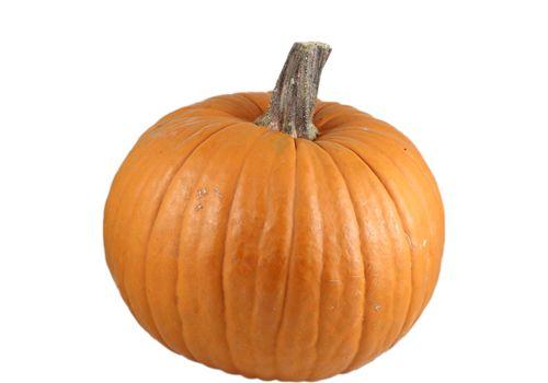 Trader Joe's | Orange Pumpkins | $2.99  #traderjoes #pumpkin