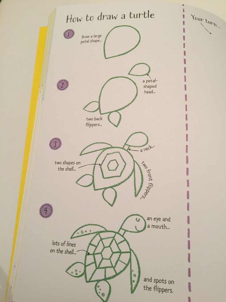 How to draw a turtle #raisasbooks http://org.usbornebooksathome.co.uk/RaisBooks/catalogue/catalogue.aspx