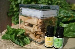 Loquat Fruit Leathers with fresh spearmint and lemon and lime essential oils recipe make a great healthy gift -  Go to the blog post and like for a chance to win free essential oils from Young Living - http://blog.youngliving.com/using-essential-oils-for-delicious-recipes/
