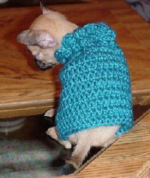 Free Crochet Doggie Sweater Pattern.