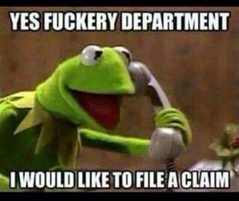 kermit the frog memes - Google Search