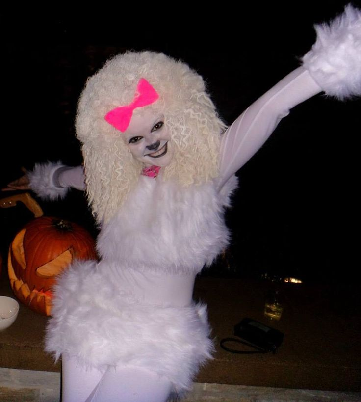 Halloween costume french poodle halloween costume homemade dog