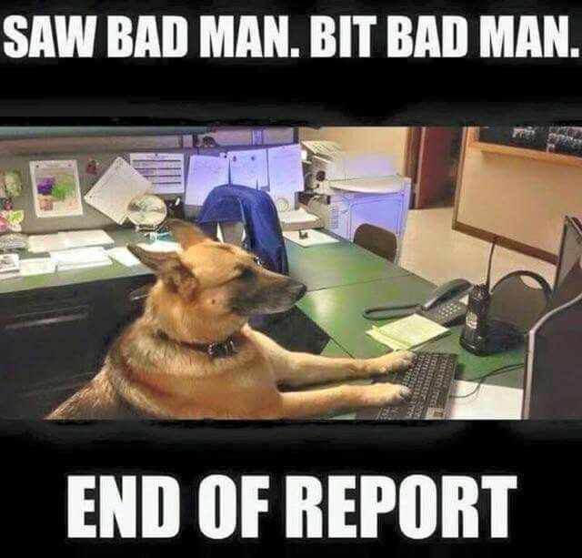 Question: Does the K-9 Unit have to give reports? -- Rosenberg PD