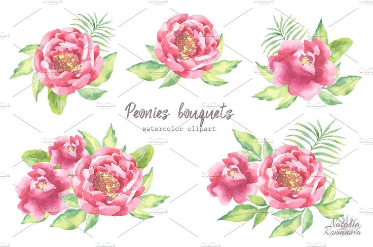 Watercolor Peonies set by Natali_art on @creativemarket