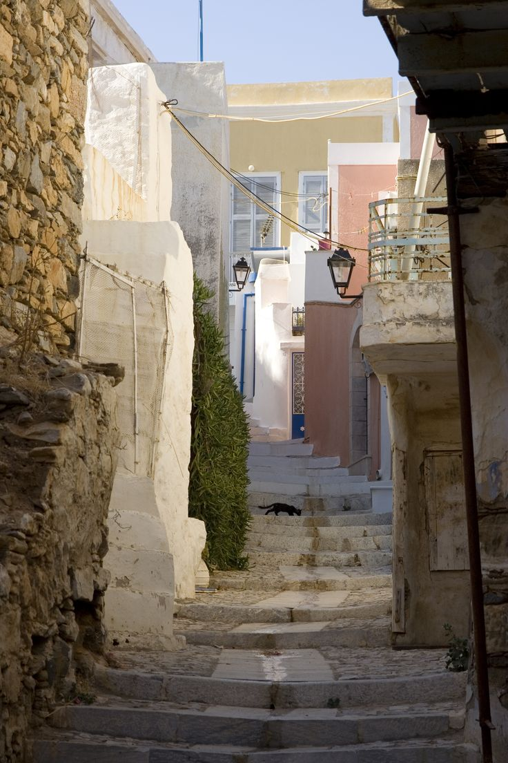 Syros, Greece alleyway with cat