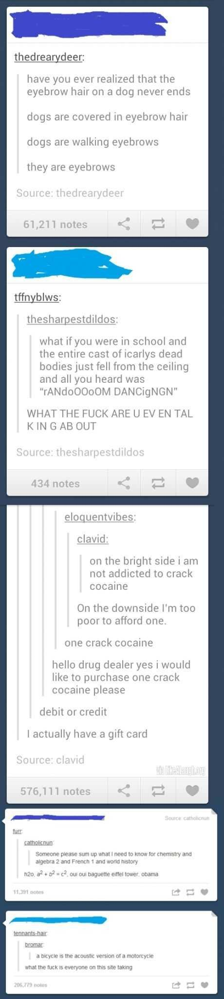 Have some tumblr gold