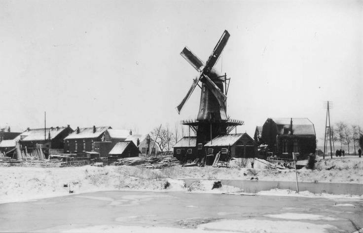 "Windmill ""De Vlasblom"" on Weeskinderendijk, 1900"