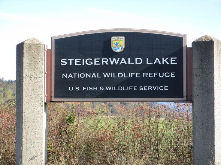 Steigerwald Lake National Wildlife Refuge, Washougal, WA 10/2016
