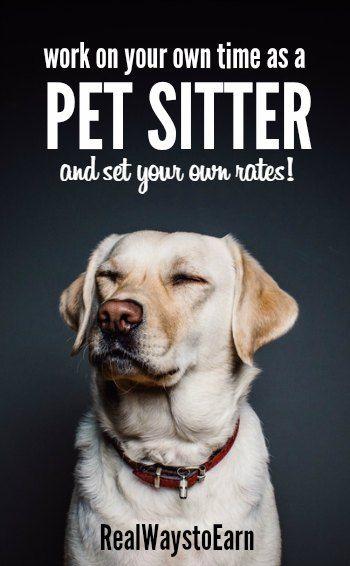 170 best Pet Sitting/Walking images on Pinterest | Card ...