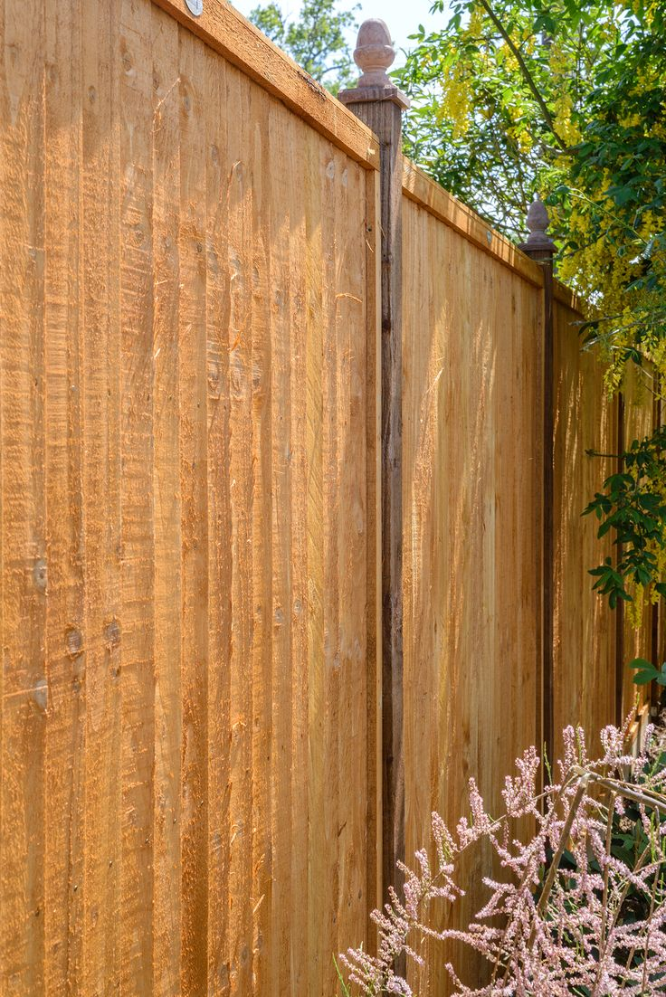 Pinterestteki 25den fazla en iyi closeboard fence panels fikri grange closeboard panel 18m baanklon Choice Image