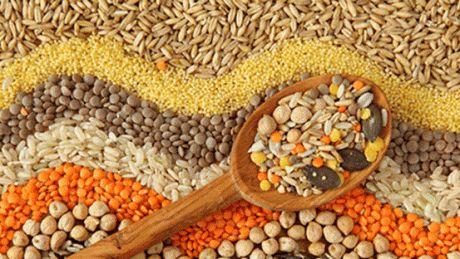 Moldova este singura ţară din Europa de Est în care se produc cereale fără gluten