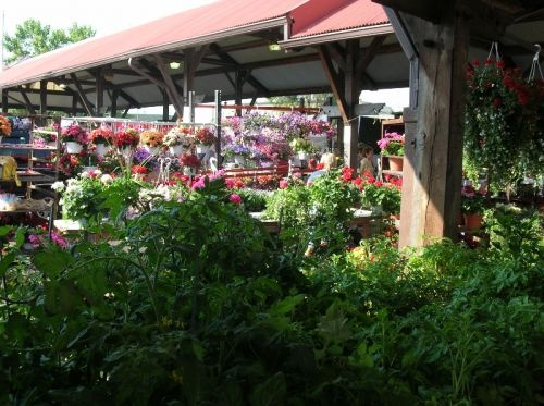 Find Flower Market in Toledo with Address, Phone number from Yahoo US Local. Includes Flower Market Reviews, maps & directions to Flower Market in Toledo and more from Yahoo US Local3/5(2).