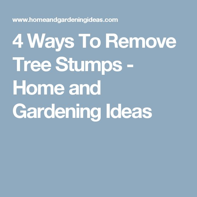 4 Ways To Remove Tree Stumps - Home and Gardening Ideas
