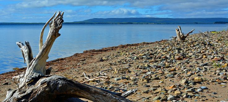 Beach of treasures with Marble Mountain in the horizon @ Driftwood Discoveries