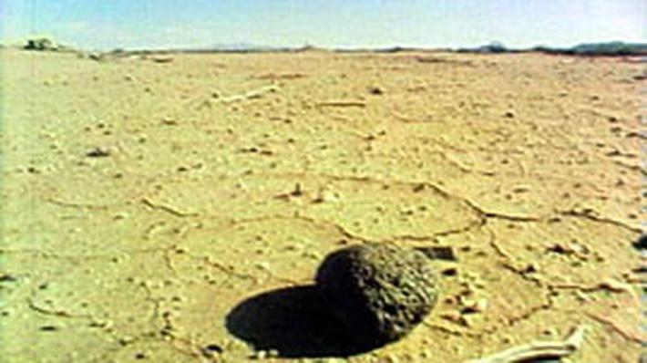 desert biodome Temperature and precipitation graphs coniferous forest | temperate deciduous forest desert el-oasr el-akhdar, egypt grassland ingeniera white, argentina.