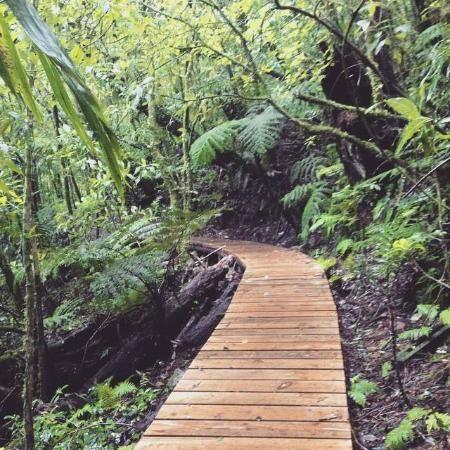 La Tigra Honduras Google Search Hiking Honduras