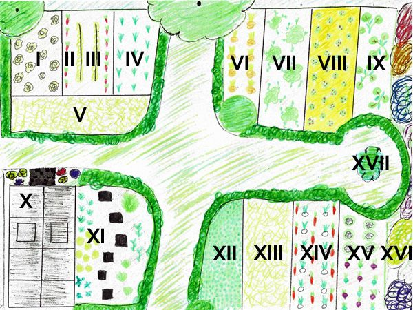 57 besten hoch und h gelbeete bilder auf pinterest g rtnern erdbeeren und garten pflanzen. Black Bedroom Furniture Sets. Home Design Ideas
