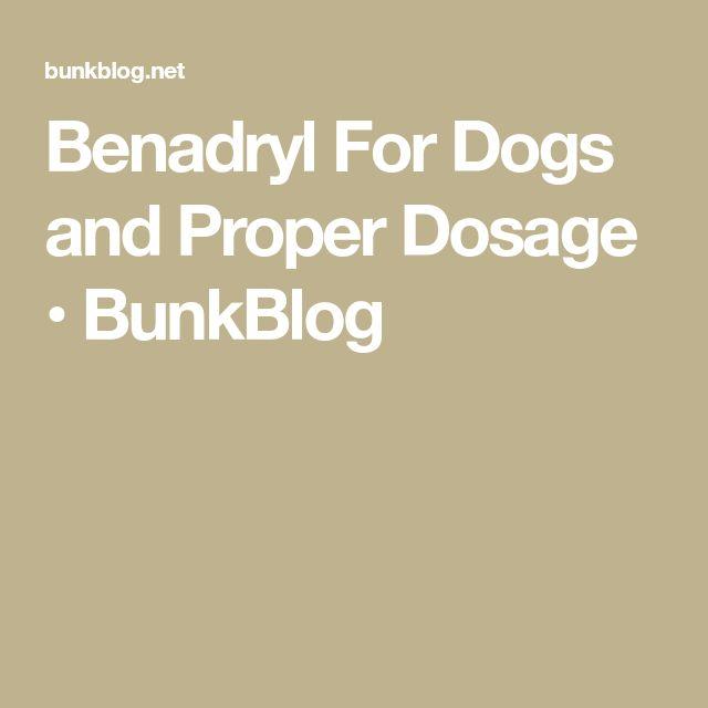 Benadryl For Dogs and Proper Dosage • BunkBlog