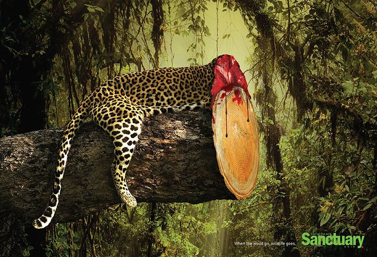 Brutal print ads bring to life the shocking effects of deforestation.