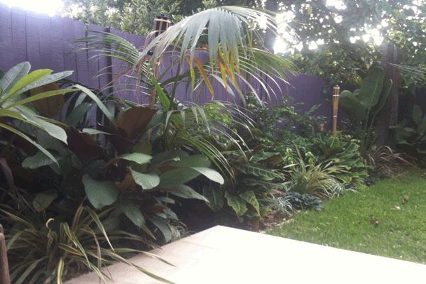 Balinese Garden Design Sydney