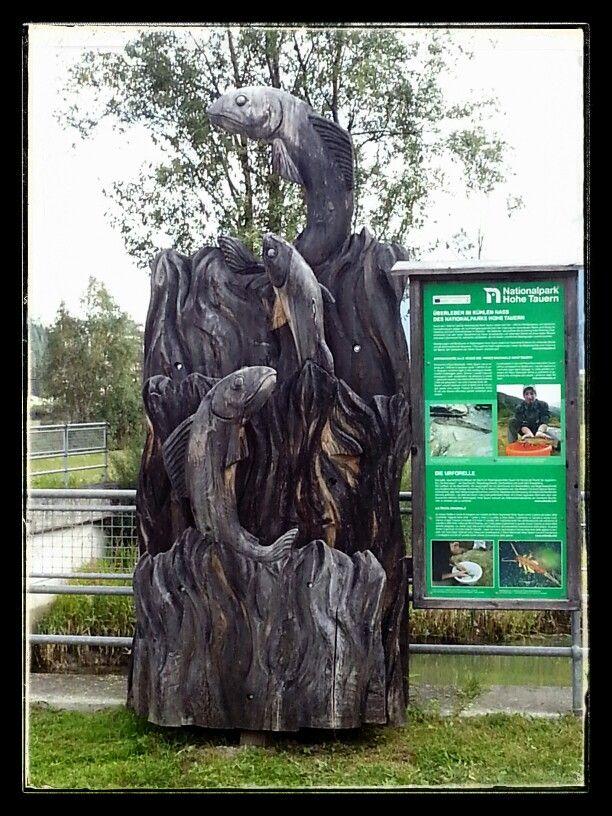Monumento alla trota #openbike #gotolienz