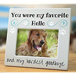 You Were my Favorite Hello and My Hardest Goodbye - Pet Memorial Picture/ Photo Frame - Bereavement Photo Frame for Dog or Cat - 4 x 6 Frame