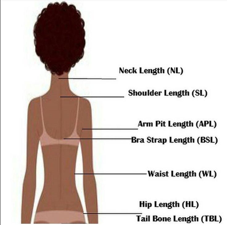 Different Hair Lengths Hair Length Chart Hair Lengths