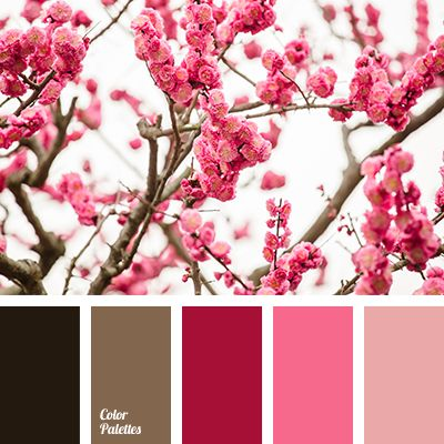 687 best images about color palette on pinterest color Red and pink colour combination