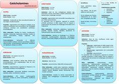 etude du comportement humain gestuel pdf