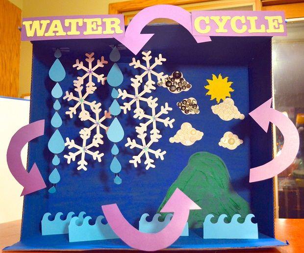 Jumbo Water Cycle Diorama