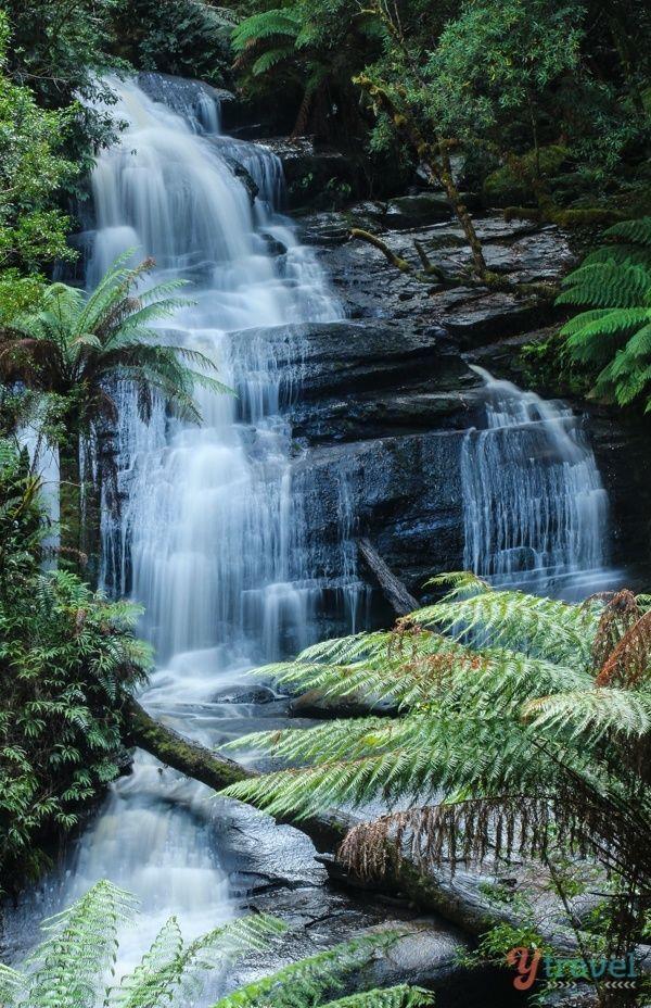 Triplett Falls in Otways National Park along the Great Ocean Road in Victoria, Australia