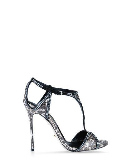 Sergio Rossi|KER BASIC|Women Sandals