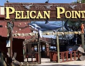 Pelican Point Seafood Restaurant Buffet Crescent Georia